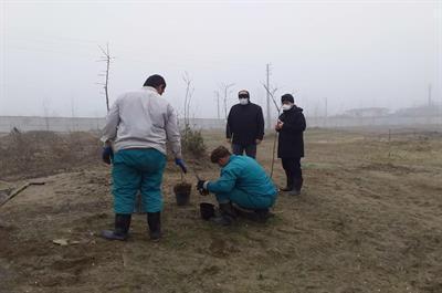 کاشت 1500 اصله نهال از گونه های درختی و درختچه ای در محوطه باغ گیاه شناسی دانشگاه مازندران