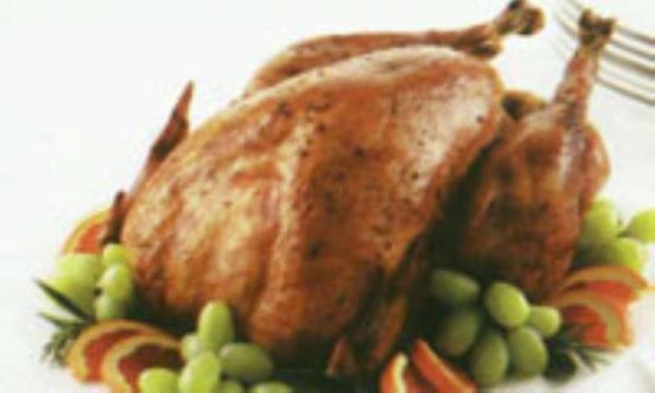 بوقلمون، گوشتی سرشار از مواد مغذی